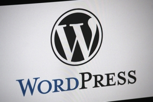 force wordpress to use quality images